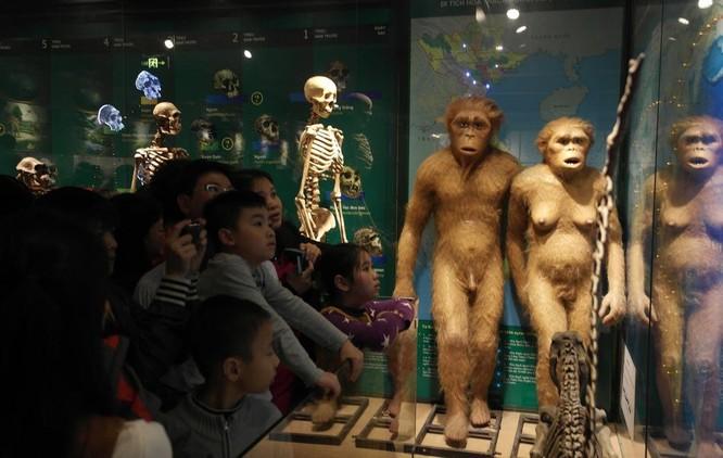 Bảo tàng Thiên nhiên quá tải vì dân đến xem cụ Rùa ảnh 6