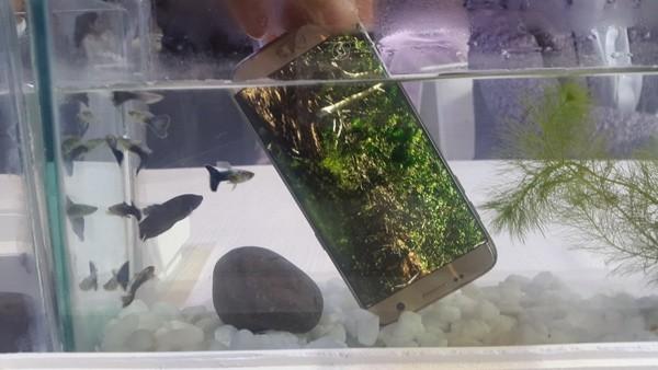 Samsung chính thức ra mắt Galaxy S7, S7 Edge tại Việt Nam ảnh 1