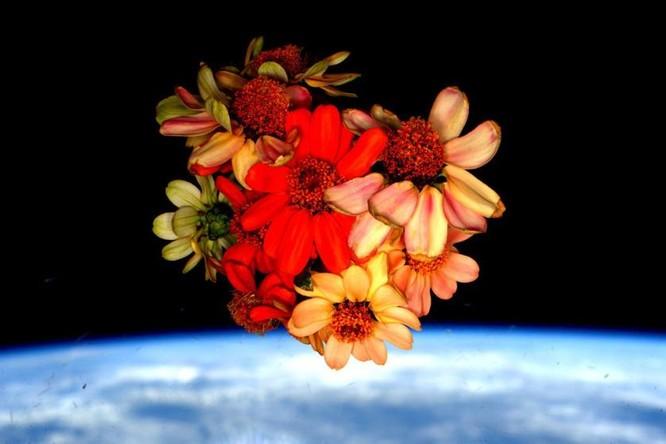 Trái Đất tuyệt đẹp nhìn từ Trạm Vũ trụ quốc tế ảnh 12