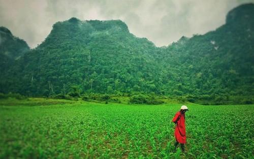 Các cảnh quay trực thăng hứa hẹn đưa lên màn ảnh rộng những khung hình Việt Nam đẹp mãn nhãn. Ảnh: Đạo diễn Jordan Vogt-Roberts.