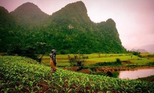 Việt Nam đẹp lạ trong mắt sao Hollywood ảnh 9