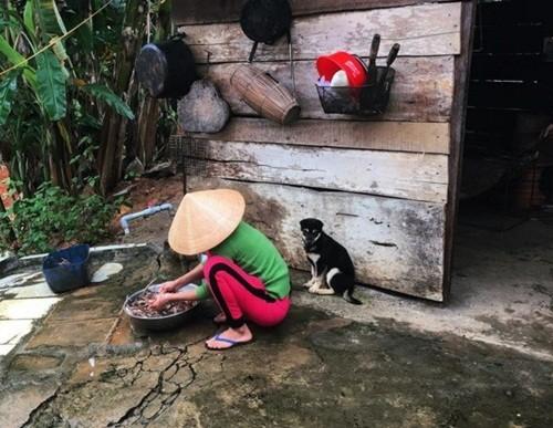 Việt Nam đẹp lạ trong mắt sao Hollywood ảnh 4