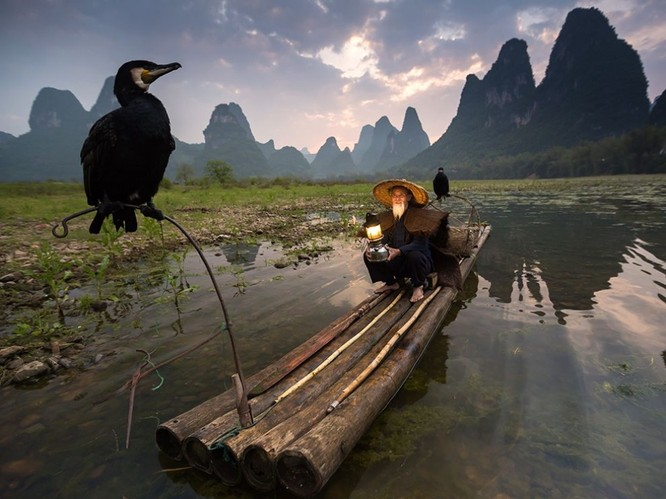 """20 bức ảnh """"có hồn"""" nhất của National Geographic ảnh 16"""