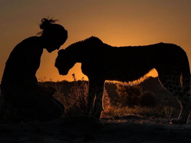 """20 bức ảnh """"có hồn"""" nhất của National Geographic ảnh 18"""