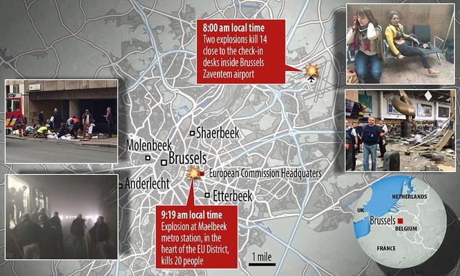 Khủng bố ở Bỉ: Chìm trong hoảng loạn và khói bụi dày đặc ảnh 33