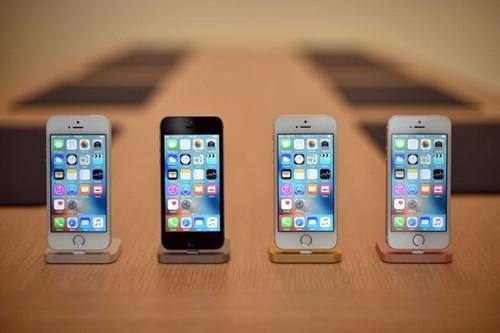 Chuyên gia công nghệ mổ xẻ iPhone 4 inch mới ảnh 1