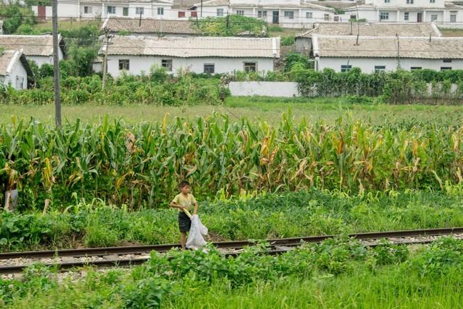 Cuộc sống ở Triều Tiên qua những bức ảnh chụp vội bằng di động ảnh 12