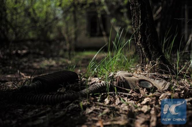8 điều có thể bạn không biết về Chernobyl ảnh 4