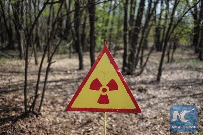 8 điều có thể bạn không biết về Chernobyl ảnh 6
