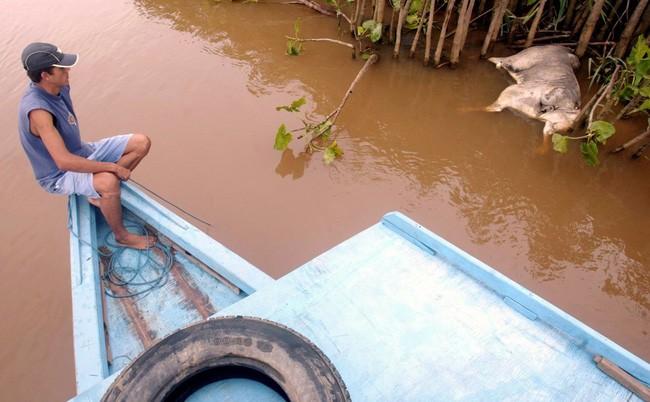 20 bức ảnh gây sốc về nguồn nước ô nhiễm trầm trọng ảnh 9