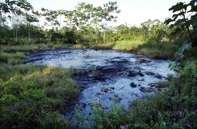 20 bức ảnh gây sốc về nguồn nước ô nhiễm trầm trọng ảnh 15