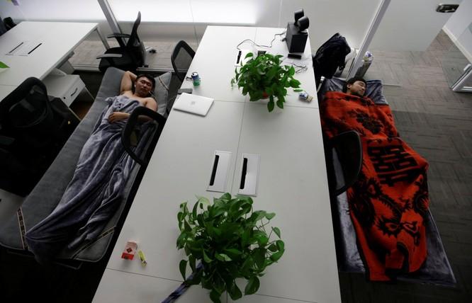 Cận cảnh cuộc sống ăn, ngủ, tắm ngay tại văn phòng của nhân viên IT Trung Quốc ảnh 3