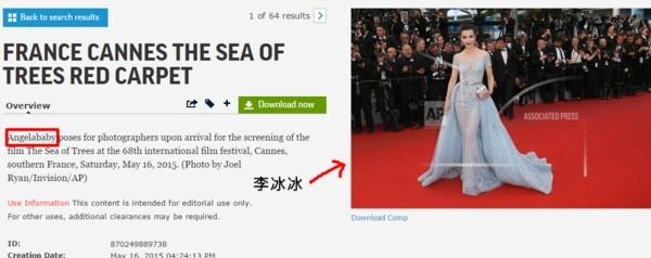 Bóc mẽ màn tỏa sáng tại Cannes của các sao châu Á ảnh 5