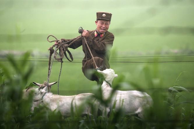 Sức mạnh của quân đội Triều Tiên ảnh 21