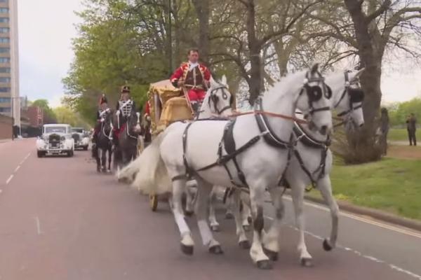 Video: Đám cưới xa hoa nhất hành tinh của con trai tỷ phú Nga ảnh 15