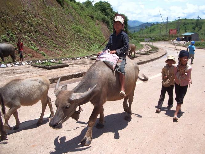 Tây Offroad nhớ đời ở Việt Nam ảnh 17