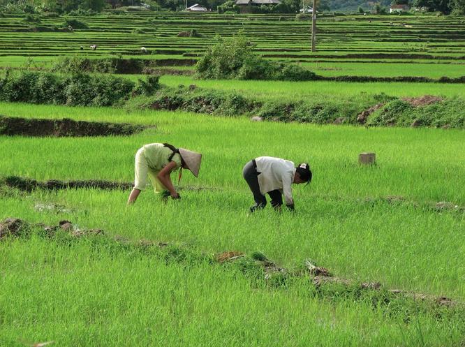 Tây Offroad nhớ đời ở Việt Nam ảnh 4