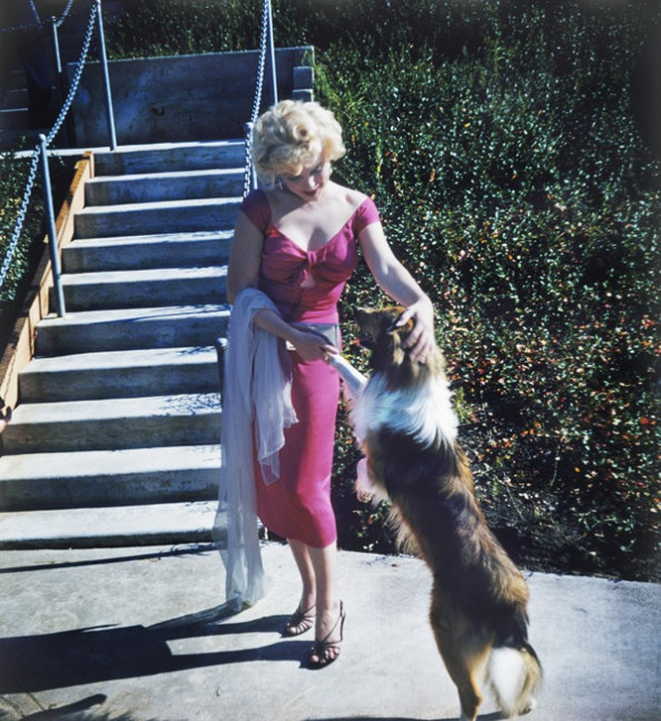 Những bức ảnh để đời của 'biểu tượng sex' Marilyn Monroe ảnh 1