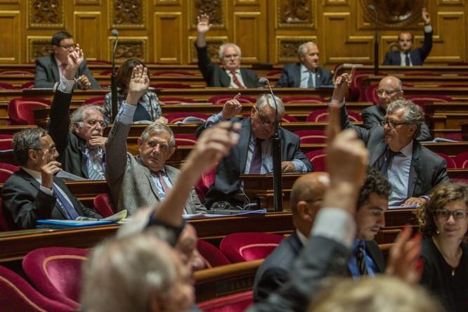 Các Thượng nghị sĩ trong cuộc bỏ phiếu tại Thượng viện Pháp thông qua nghị quyết kêu gọi nới lỏng biện pháp trừng phạt chống Nga