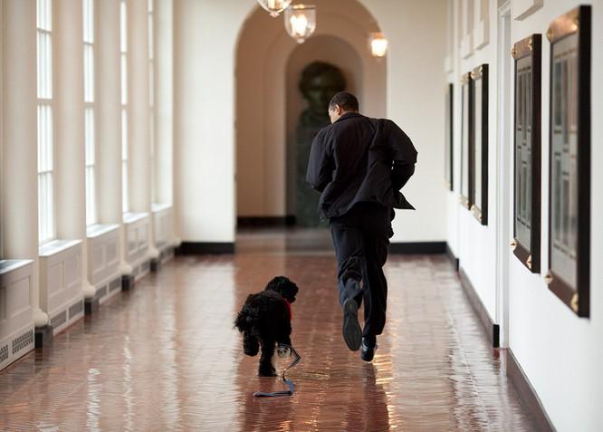 20 bức hình Tổng thống Obama muốn xem lại nhiều lần ảnh 8
