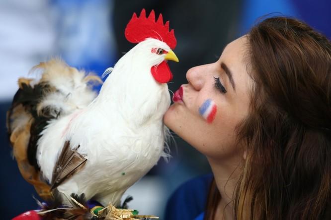 1001 kiểu nụ hôn tại Euro 2016 ảnh 14