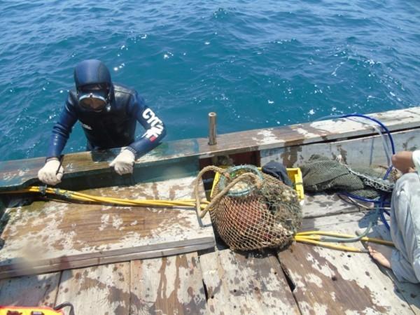 Video: Nhìn lại 84 ngày truy tìm nguyên nhân thảm họa cá chết ảnh 6