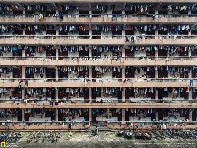 Ấn tượng những bức ảnh đoạt giải National Geographic 2016 ảnh 8