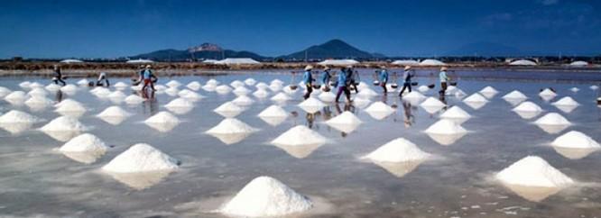 Cánh đồng muối Việt: Nơi ngắm hoàng hôn đẹp nhất thế giới ảnh 3