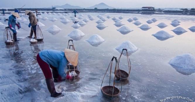 Cánh đồng muối Việt: Nơi ngắm hoàng hôn đẹp nhất thế giới ảnh 2