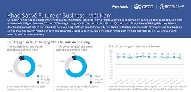 78% doanh nghiệp Việt sử dụng công cụ quảng cáo trực tuyến ảnh 1
