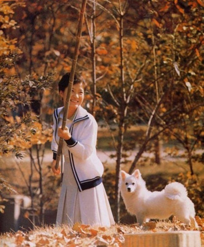 Năm 1971, bà Park quyết định theo học chuyên ngành kỹ sư điện tại trường Đại học Sogang.