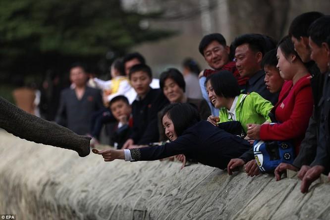 Những hình ảnh hiếm hoi về cuộc sống yên bình của trẻ em Triều Tiên ảnh 11