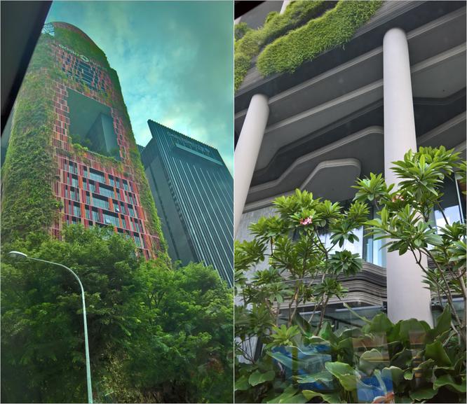 """""""Lạc lối"""" góc nhỏ bình yên ở Singapore thời CMCN 4.0 ảnh 2"""