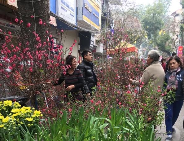 Chợ hoa Hàng Lược nhộn nhịp những ngày cuối năm ảnh 5