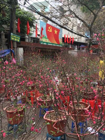 Chợ hoa Hàng Lược nhộn nhịp những ngày cuối năm ảnh 10