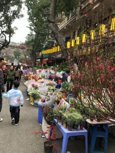 Chợ hoa Hàng Lược nhộn nhịp những ngày cuối năm ảnh 1