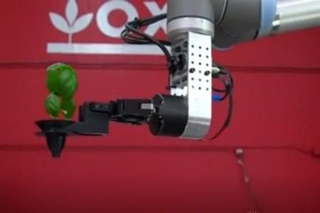 Mỹ có nông trại đầu tiên do robot quản lý hoàn toàn ảnh 1