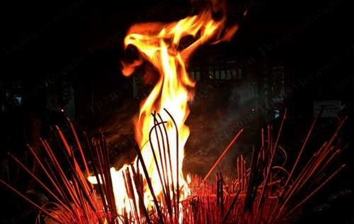 Thiên nhiên kỳ thú: Phượng hoàng lửa giữa hoàng hôn Tây Hồ ảnh 2