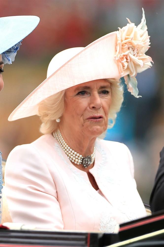 Những chiếc mũ gây ấn tượng nhất từ Royal Ascot 2019 ảnh 10