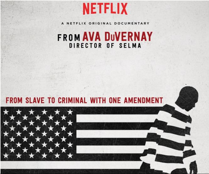 Netflix miễn phí 10 phim tài liệu phục vụ học tập mùa dịch COVID-19 ảnh 1