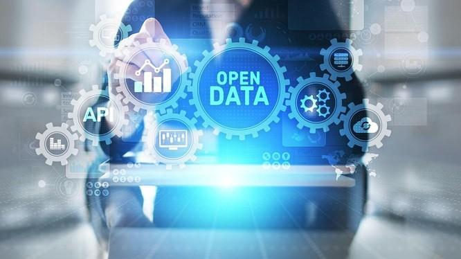 Dữ liệu mở rất cần thiết cho chuyển đổi số ở Việt Nam, nhưng loại dữ liệu nào nên được mở? ảnh 1
