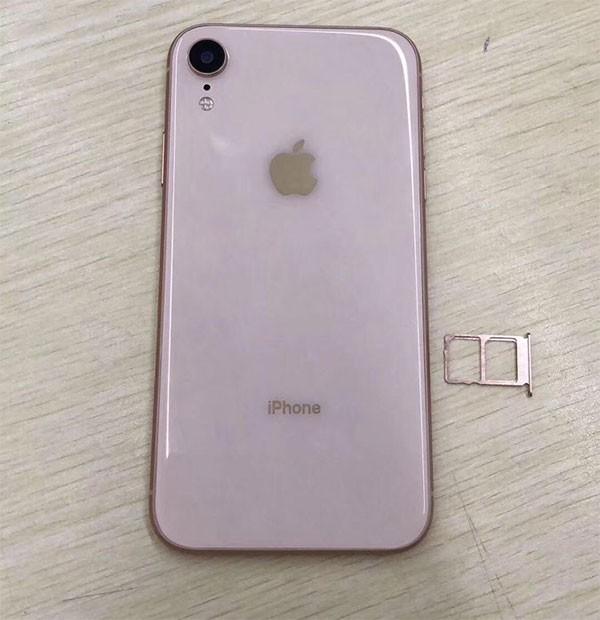 Xuất hiện hình ảnh rò rỉ mới nhất về iPhone XC giá rẻ, 4 màu, 2 SIM ảnh 2