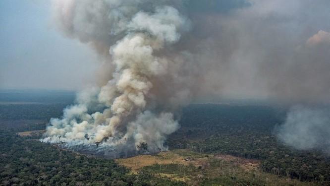 Rừng Amazon bị tàn phá bởi hàng loạt đám cháy lớn (Ảnh: France24)