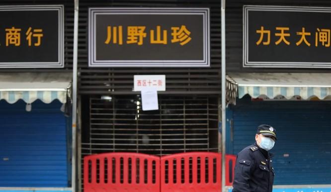 Khu chợ hải sản ở Vũ Hán, Trung Quốc có khả năng không phải nơi bắt nguồn của chủng virus corona mới (Ảnh: SCMP)