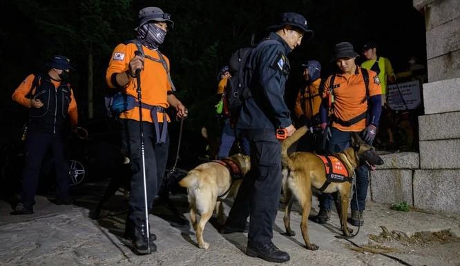 Đội tìm kiếm được triển khai trong chiến dịch truy tìm ông Park Won-soo (Ảnh: AFP)