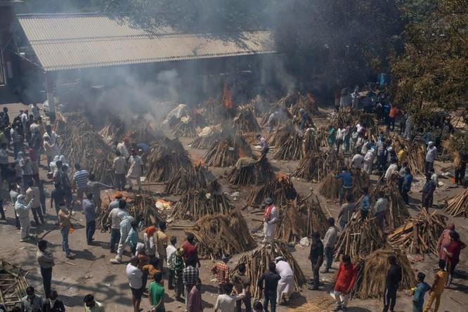 Hình ảnh chấn động về COVID-19 ở Ấn Độ: Thi thể chất đống, chính quyền đề nghị chặt cây làm hỏa táng ảnh 2