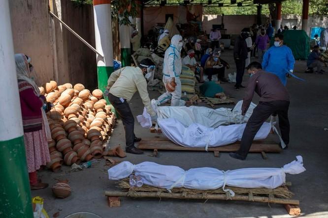 Hình ảnh chấn động về COVID-19 ở Ấn Độ: Thi thể chất đống, chính quyền đề nghị chặt cây làm hỏa táng ảnh 8