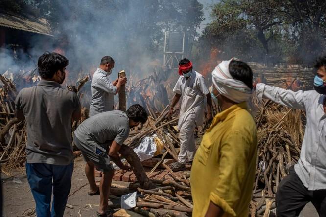 Hình ảnh chấn động về COVID-19 ở Ấn Độ: Thi thể chất đống, chính quyền đề nghị chặt cây làm hỏa táng ảnh 4