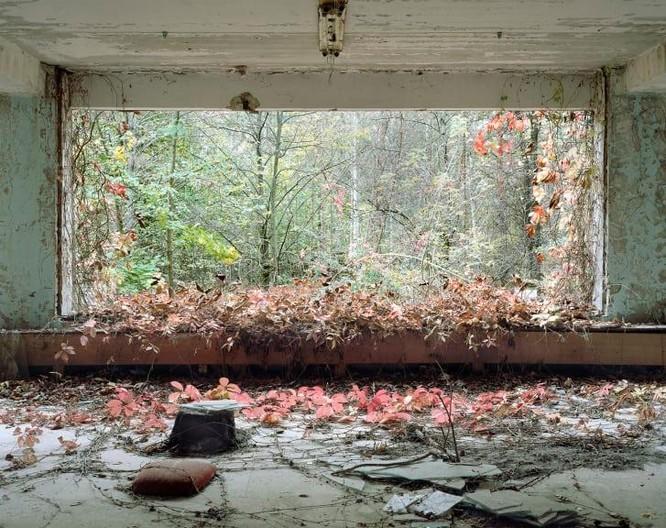 """Những bức ảnh chụp cảnh tượng bên trong """"Thành phố chết Chernobyl"""" ảnh 6"""
