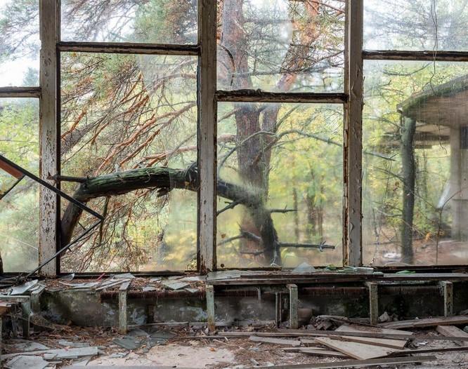 """Những bức ảnh chụp cảnh tượng bên trong """"Thành phố chết Chernobyl"""" ảnh 7"""